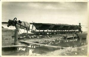 Foto Tervisemuda transport Suurlahest. Pildistatud enne 1940.a. Kirss, Andy kollektsioon. SM F 3761:1404 F